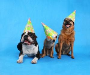 birthday trio