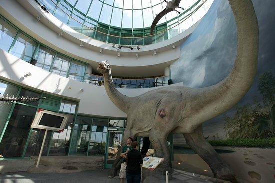 NC_Natural_Sciences_Museum
