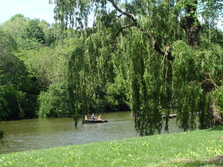 You can also row around Central Park for a few bucks.