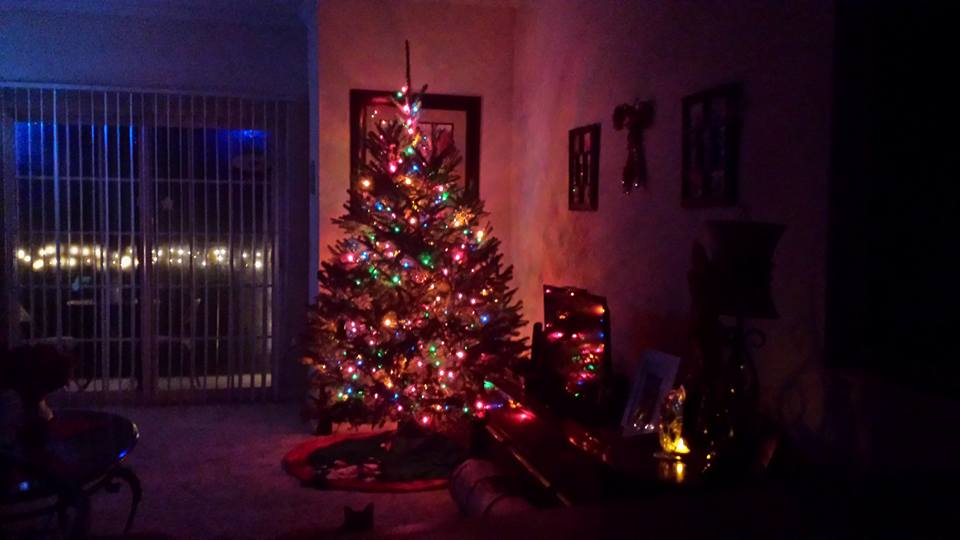 NC_Christmas_Tree_2015